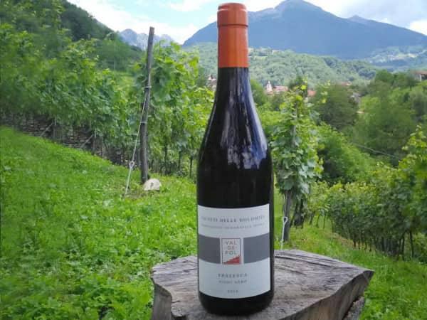 Bottiglia Valdepol con le vigne sullo sfondo