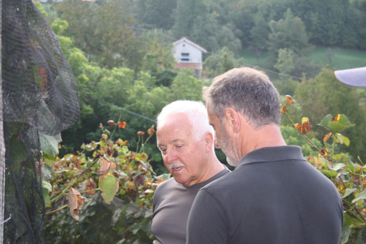 Valdepol vendemmia Pinot Nero Cors 2020