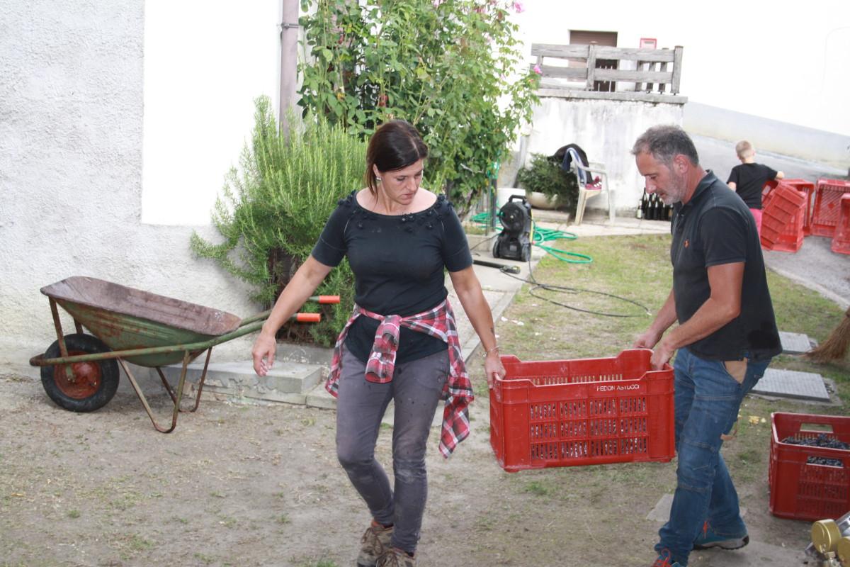 Katja e Gianluca vendemmia valdepol pinot nero 2020